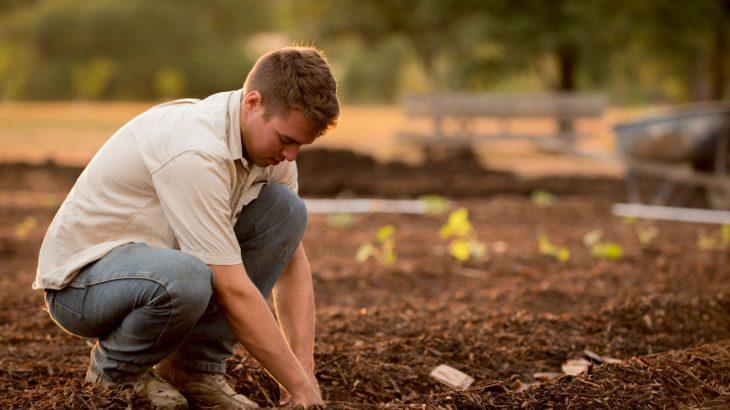 農業や造園などで使う防草シートのおすすめ