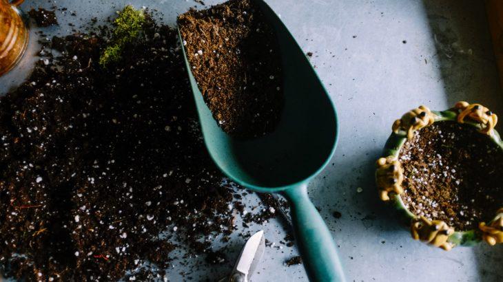 育苗に必要な資材のおすすめ(水稲・野菜)