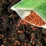 水稲用・家庭菜園用・プロの農家用おすすめの種まき機【播種機】